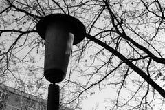 Vecchia posta alta in bianco e nero della lampada, Fotografie Stock Libere da Diritti