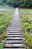 Vecchia posta di modo della passeggiata dei san Fotografie Stock Libere da Diritti