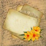 Vecchia priorità bassa del grunge con documento ed il fiore Fotografie Stock
