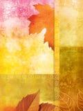 Vecchia priorità bassa della parete con i fogli d'autunno Fotografia Stock Libera da Diritti
