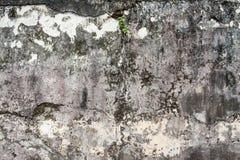 Vecchia priorità bassa della parete del cemento Immagini Stock