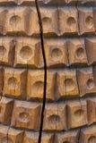 Vecchia priorità bassa di legno Immagini Stock