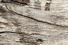 Vecchia priorità bassa di legno Fotografia Stock