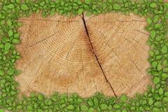 Vecchia priorità bassa di legno con il blocco per grafici floreale Immagine Stock Libera da Diritti
