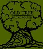 Vecchia priorità bassa di legno Immagine di grande tronco e di una corona densa di vecchio albero illustrazione vettoriale
