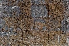 Vecchia priorità bassa di struttura della parete fotografia stock