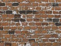 Vecchia priorità bassa marrone del muro di mattoni Fotografia Stock Libera da Diritti