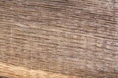 Vecchia quercia di legno graffiata della palude Struttura Immagini Stock Libere da Diritti