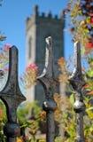 Vecchia rete fissa davanti alla vecchia chiesa irlandese immagine stock