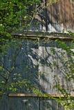 Vecchia rovina di legno del castello della porta immagine stock