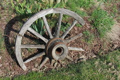 Vecchia ruota di vagone di legno tagliata fotografia stock libera da diritti