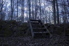 Vecchia scala di legno sopra una parete di pietra, in una foresta in Svezia del Nord Alberi di betulla nei precedenti, foglie cad Immagini Stock