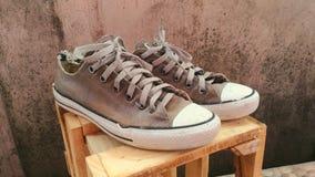 Vecchia scarpa da tennis Fotografia Stock