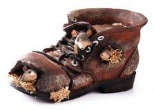 Vecchia scarpa stracciata Fotografia Stock