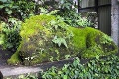 Vecchia scultura del leone coperta di muschio nella foresta della scimmia di Ubud immagini stock libere da diritti