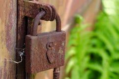 Vecchia serratura di portello arrugginita Immagini Stock