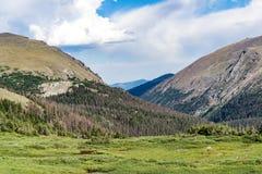 Vecchia strada di Fall River - parco nazionale colorado della montagna rocciosa Fotografie Stock Libere da Diritti