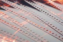 Vecchia striscia di pellicola della negazione 35mm su fondo bianco Fotografia Stock