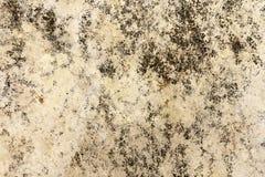 Vecchia struttura concreta del fondo del pavimento della macchia Immagini Stock