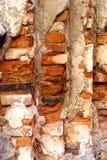 Vecchia struttura del mattone Fotografia Stock Libera da Diritti