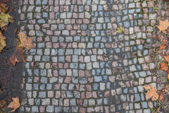 Vecchia struttura del percorso della pavimentazione del mattone Immagini Stock Libere da Diritti