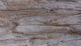 Vecchia struttura di legno Fotografie Stock