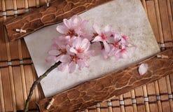 Vecchia struttura di legno d'annata con i fiori della molla Fotografia Stock Libera da Diritti