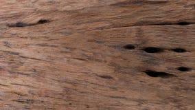 Vecchia struttura di legno, legno duro naturale Fotografie Stock Libere da Diritti