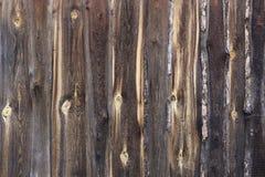 Vecchia struttura di legno naturale del fondo Immagine Stock Libera da Diritti