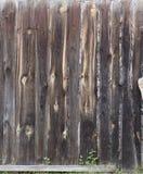 Vecchia struttura di legno naturale del fondo Immagini Stock