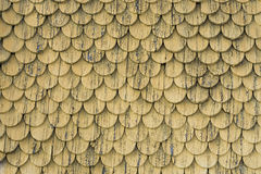 Vecchia struttura di legno rustica della parete del tetto di piastrellatura Fondo stagionato giallo Fotografia Stock