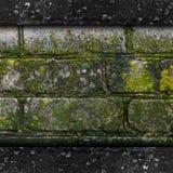 Vecchia struttura verde della muffa di modello della pietra della parete del muschio Immagine Stock