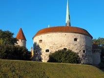 Vecchia Tallinn, Estonia Fotografie Stock Libere da Diritti