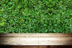 Vecchia tavola con il fondo delle foglie verdi Fotografia Stock Libera da Diritti