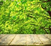 Vecchia tavola di legno per esposizione, querce Immagine Stock