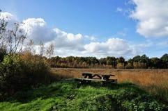 Vecchia tavola di picnic di legno in una foresta in Olanda fotografia stock libera da diritti