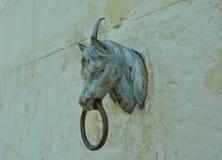 Vecchia testa arrugginita di un cavallo con un anello sulla parete di una stalla fotografia stock