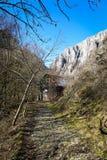 Vecchia tettoia - gola di Turda - Cheile Turzii, la Transilvania, Romania Immagine Stock