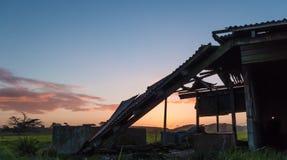 Vecchia tettoia rotta dell'azienda agricola Fotografie Stock