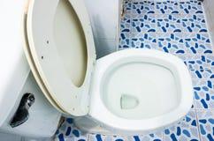 Vecchia toilette con sciacquone Fotografia Stock Libera da Diritti