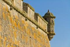 Vecchia torre della fortezza con il lichene Immagine Stock