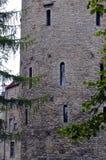 Vecchia torre grigia Immagine Stock Libera da Diritti