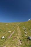 Vecchia traccia alpina della strada che conduce al confine italiano e francese Immagine Stock Libera da Diritti