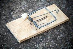 Vecchia trappola per topi con esca grassa Immagine Stock Libera da Diritti