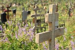 Vecchia traversa di legno sulla tomba invasa fotografia stock libera da diritti