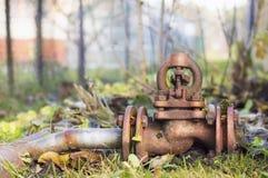 Vecchia valvola nociva rustica in un prato di autunno Immagine Stock
