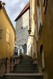 Vecchia via di Tallinn, Estonia Fotografia Stock Libera da Diritti