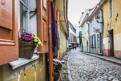 Vecchia via di Tallinn Estonia fotografia stock libera da diritti