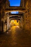 Vecchia via medievale stretta di Tallinn nella notte fotografia stock