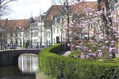 Vecchia via olandese Immagine Stock Libera da Diritti